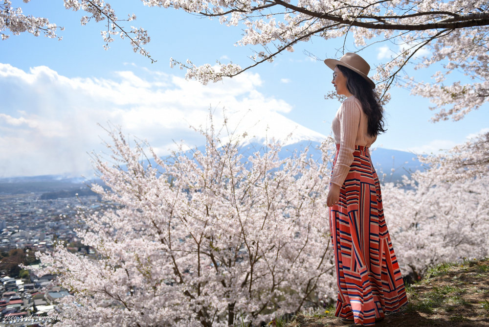 thewanderingcam_chureito pagoda_sakura-0153.jpg