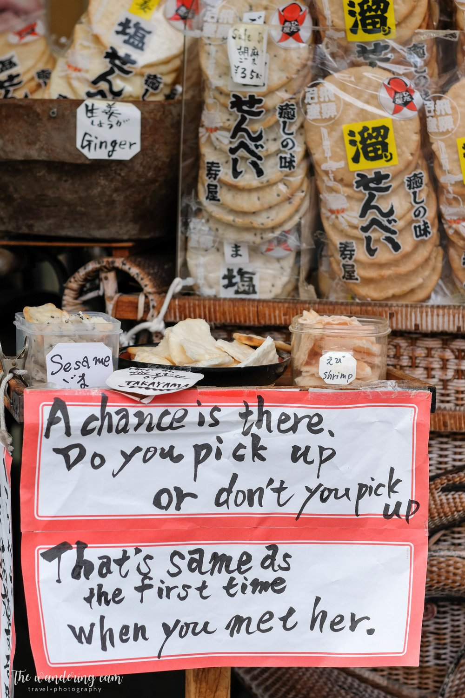 thewanderingcam_hida takayama_travel-3355.jpg