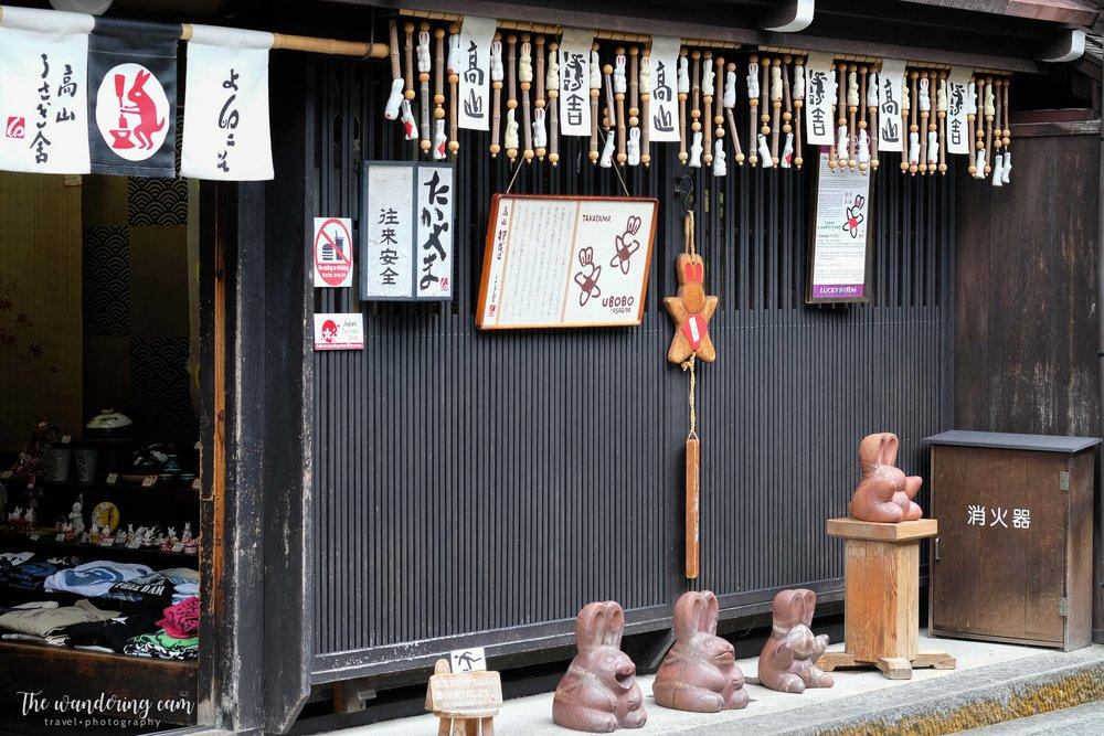 thewanderingcam_hida takayama_travel-3112.jpg