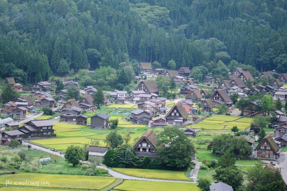 thewanderingcam_shirakawago_travel-3144.jpg