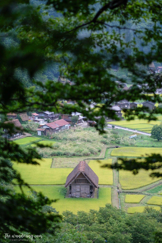 thewanderingcam_shirakawago_travel-3220.jpg