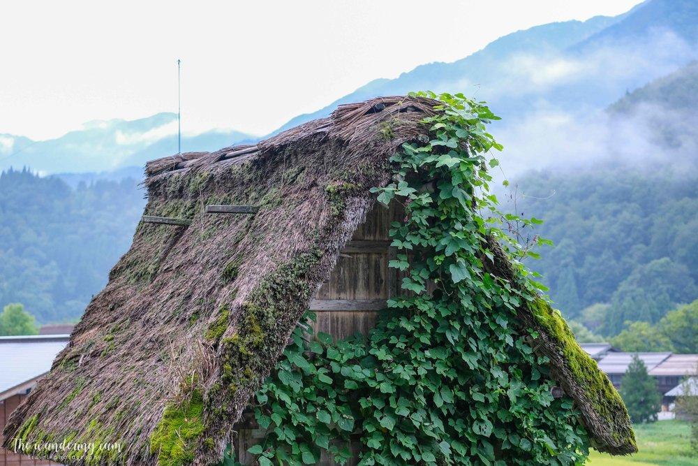 thewanderingcam_shirakawago_travel-3227.jpg
