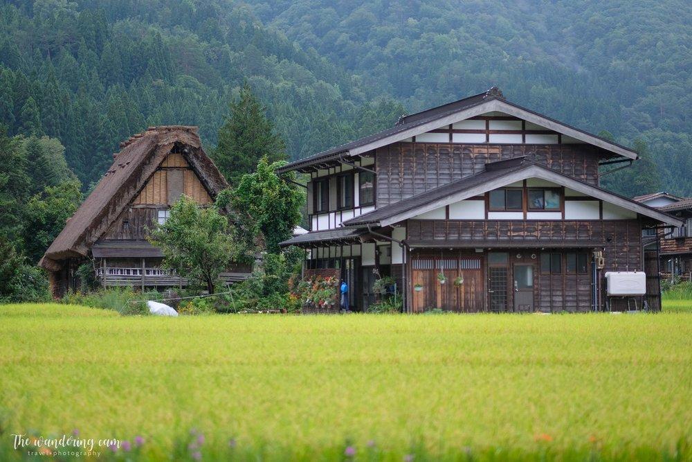 thewanderingcam_shirakawago_travel-3229.jpg