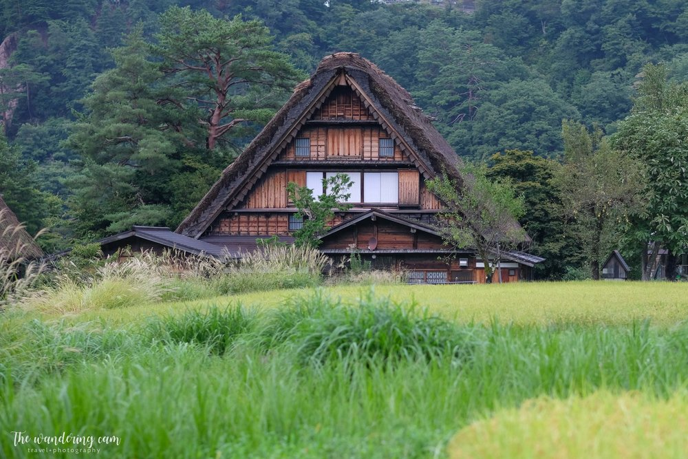 thewanderingcam_shirakawago_travel-3237.jpg