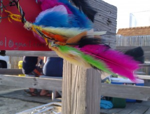 feathers on the boardwalk