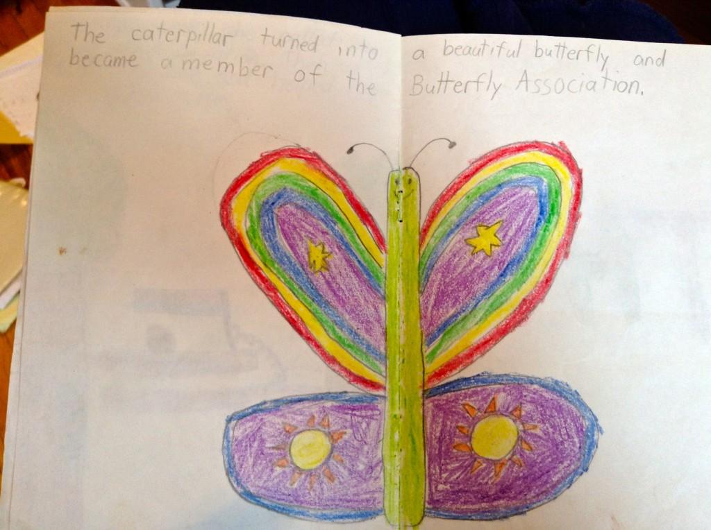 butterfly association 6