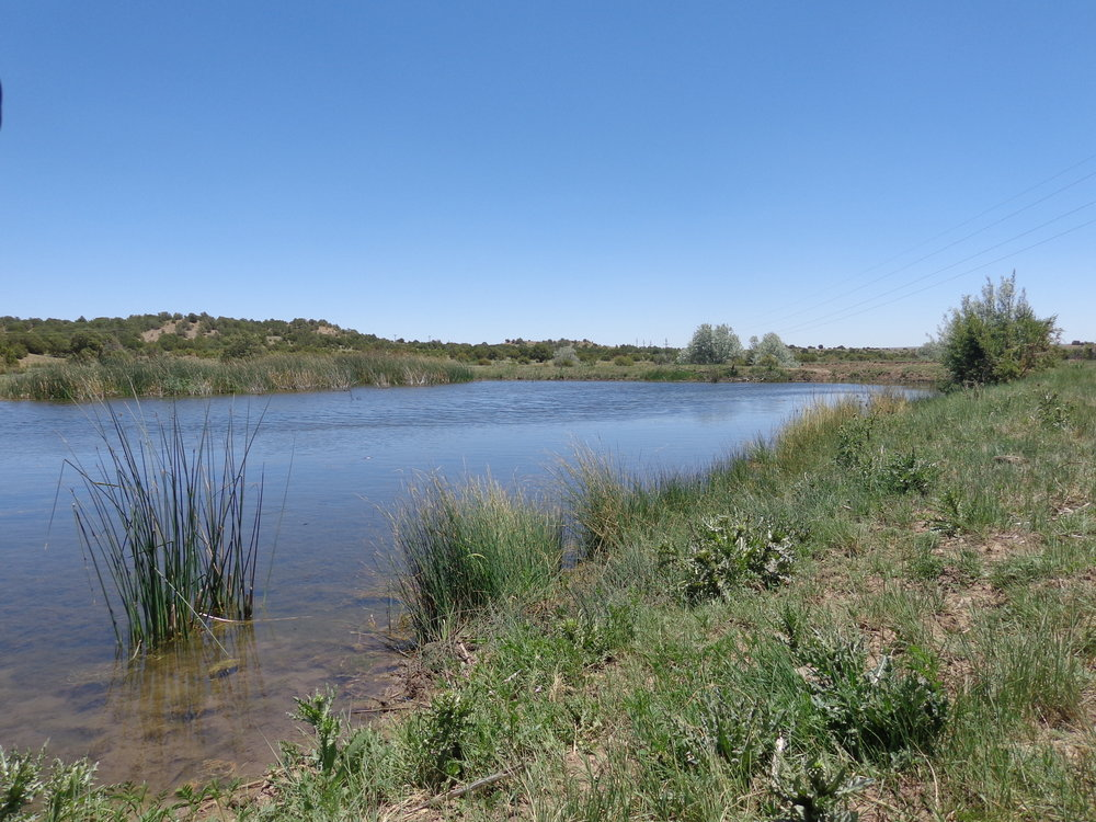 Pecos Arroyo Land.jpg