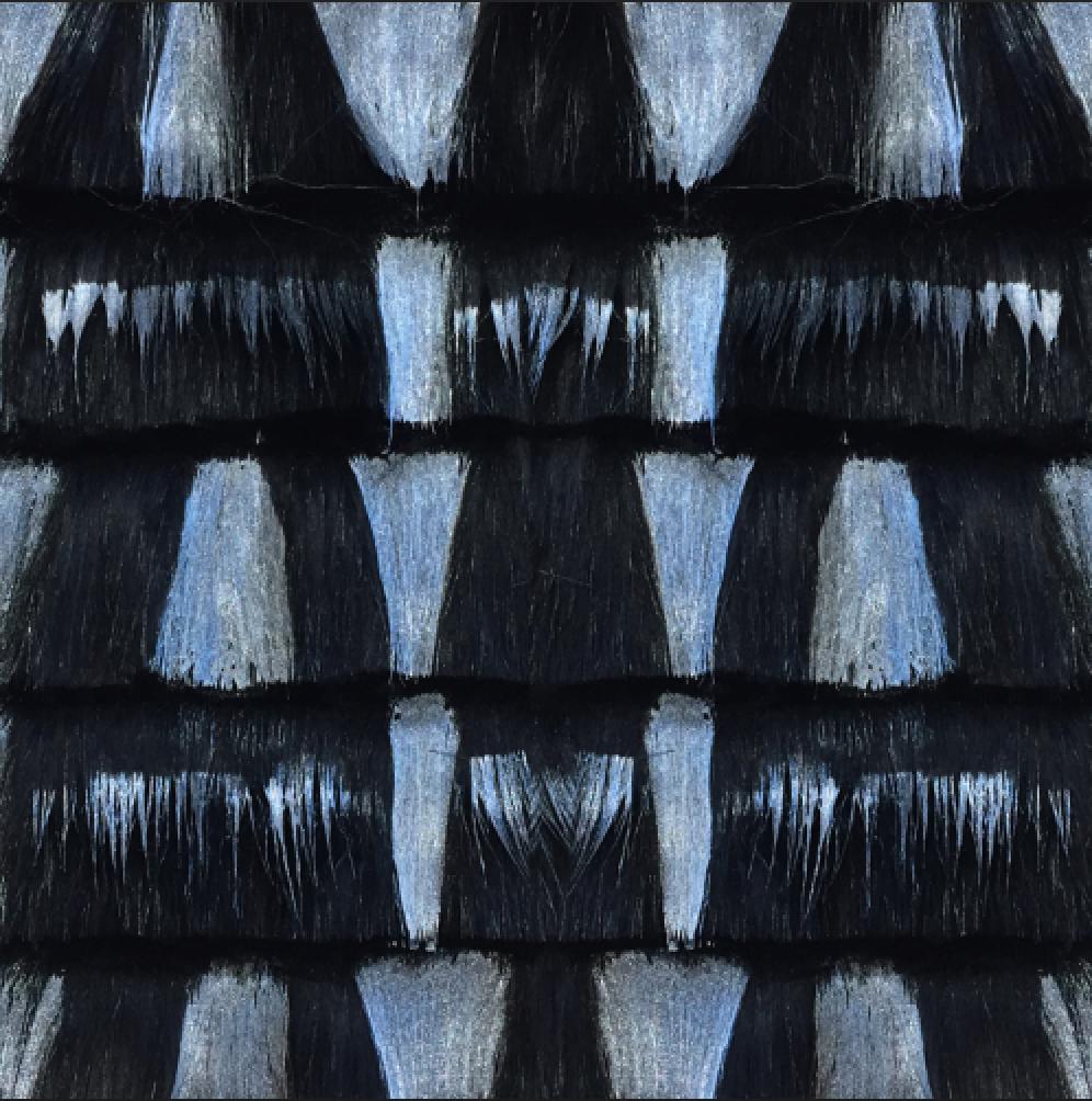 silver paint on faux fur