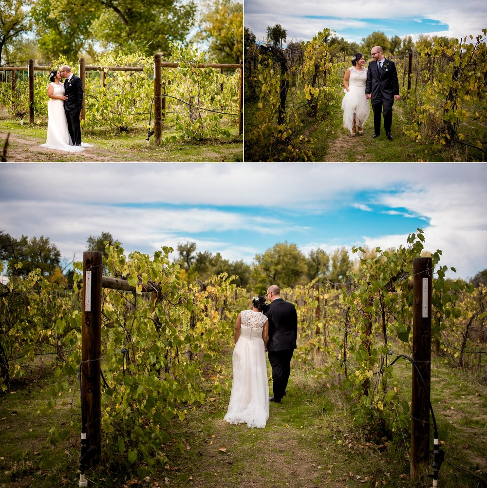 River Garden Winery Wedding_0013.jpg