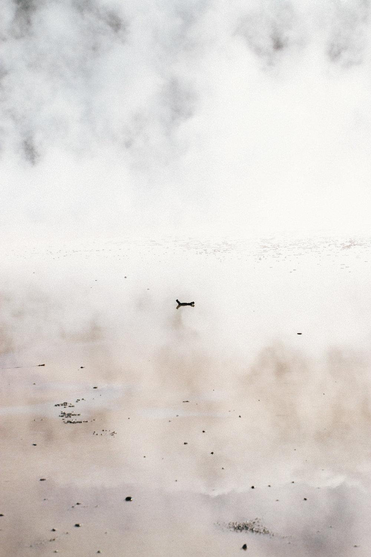 nz-rotorua-9.jpg