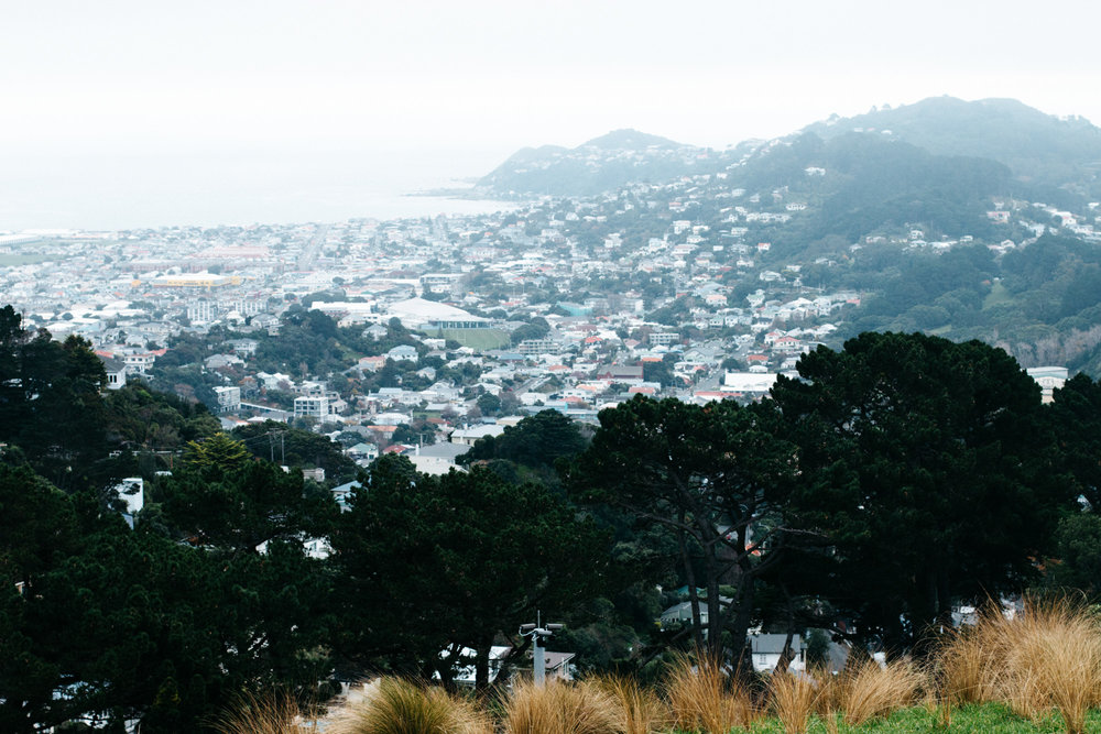 nz-wellington-5.jpg