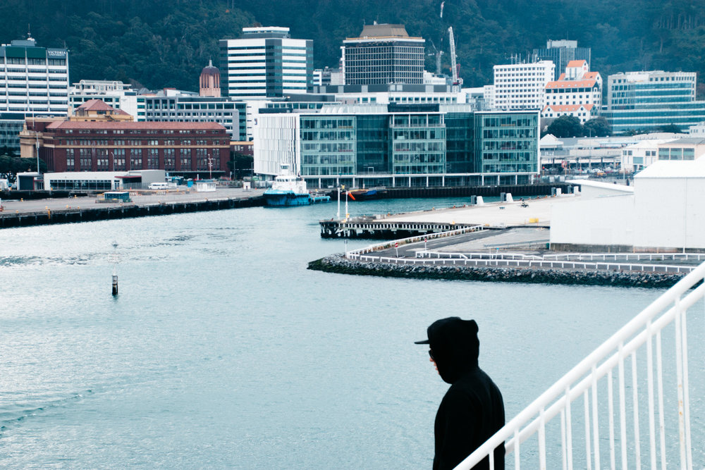 nz-wellington-15.jpg