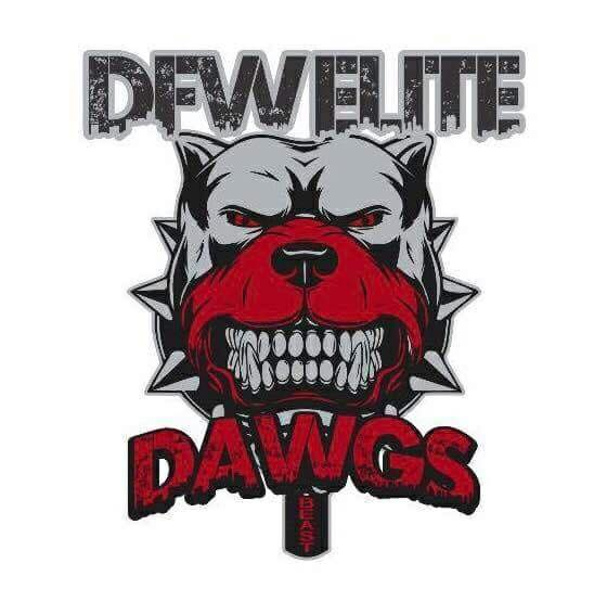DFW Elite Logo .jpeg