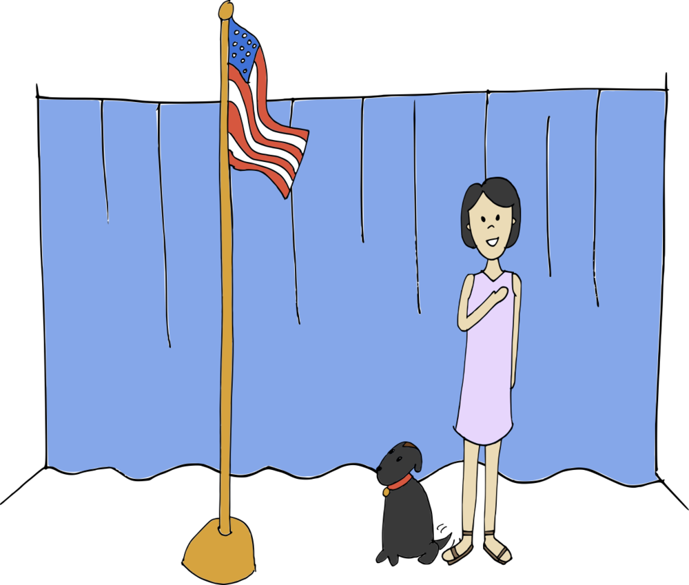 american civics test