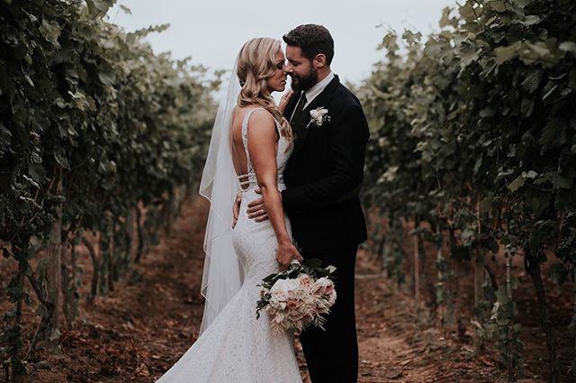 Today was perfect. . . #caitkennedyphotography #bcwedding #photobugcommunity #lookslikefilmweddings #junebugweddings #rfpotd #langleyphotographer #realweddings #vineyardwedding
