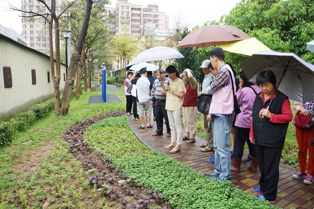 HERB PARK - 泰山區公所設立多個香草公園