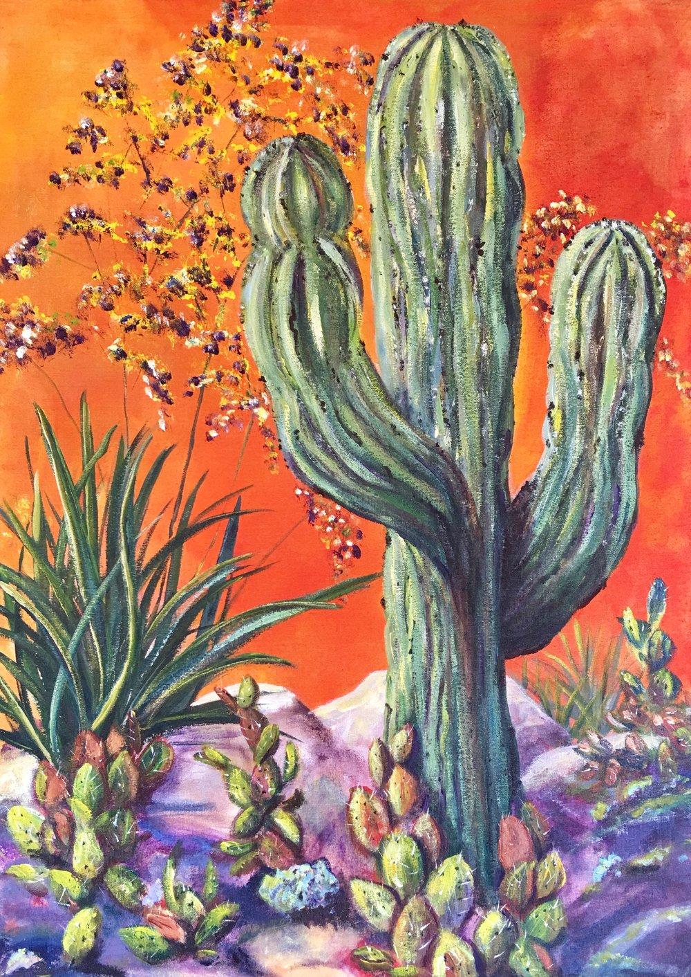 """Saguaro  28"""" x 20""""  $750"""
