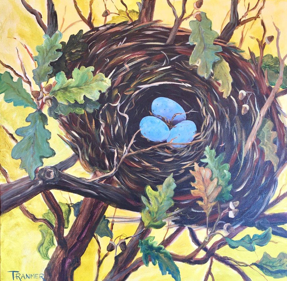 """Nest in an Oak Tree  24"""" x 24""""  $900"""