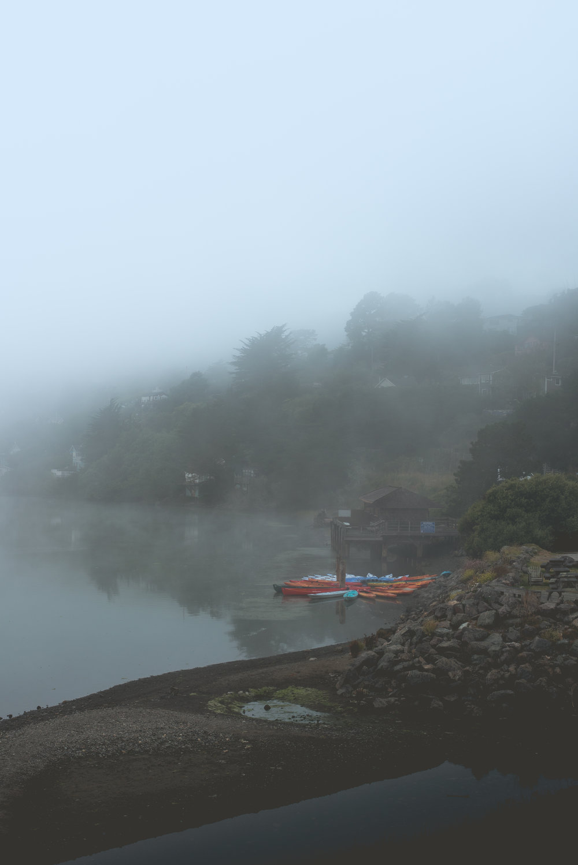 Fog in Jenner, CA. ISO 200, f/5, 1/250