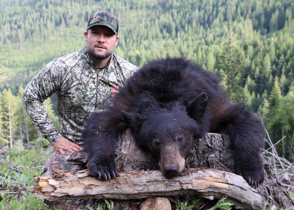 josh bear 2.jpg