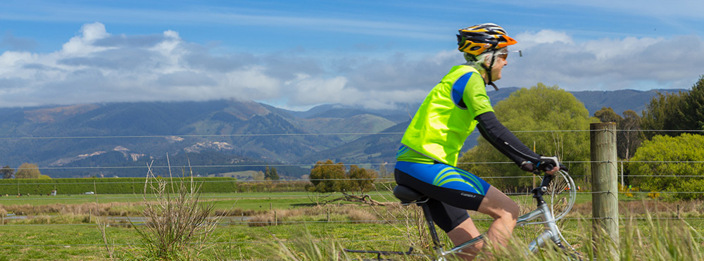 Wheelie Fantastic Cycle Tours offer bike hire