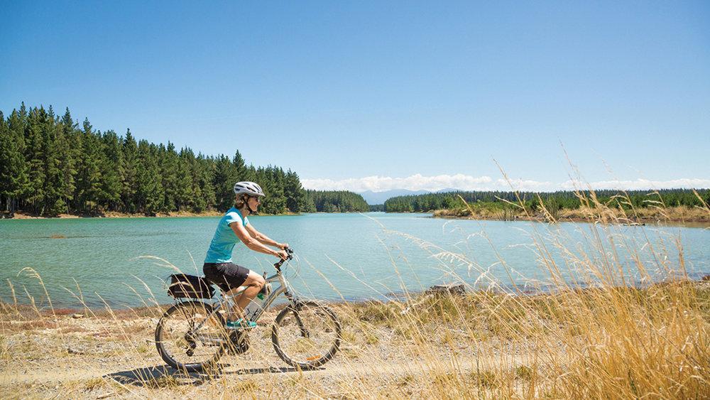 Rabbit Island easy cycling