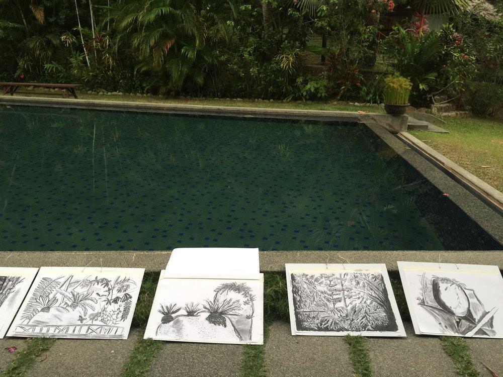 Tiger Rock. En plein air charcoal drawings.