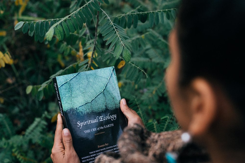 March Book - Spiritual Ecology: The Cry of the Earth