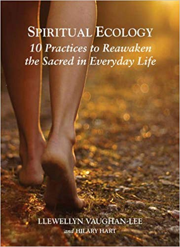 For the Avid Readers - Spiritual Ecology: 10 Practices to Reawaken the Sacred in Everyday Life, is a great additional read.