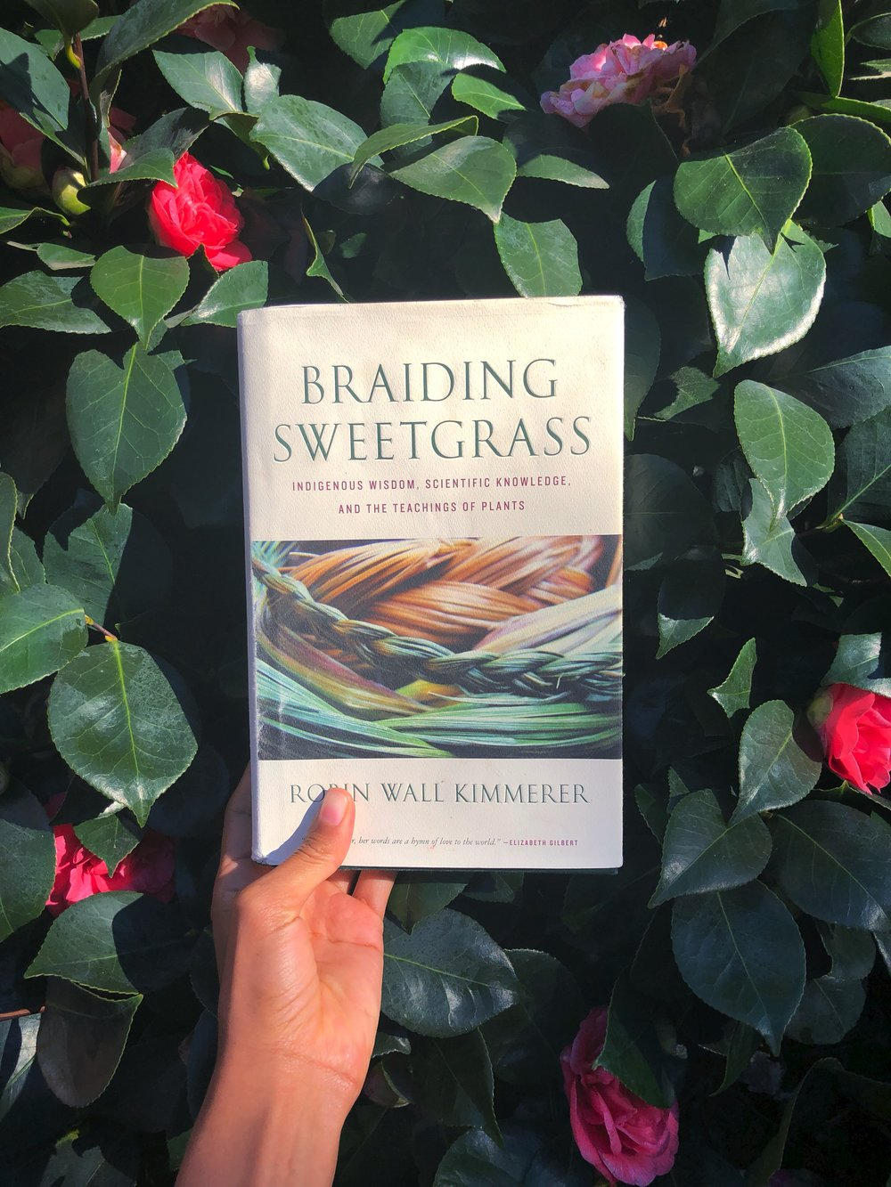 Additional Resources for the Avid Reader - Read: Gathering MossListen: Indegenous Knowledge for Earth HealingExperience: Corn Tastes Better on the Honor System