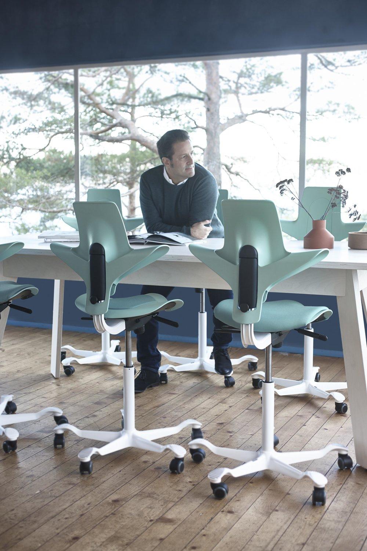 HAG Capisco Puls 8010 Seagreen Chair.jpg