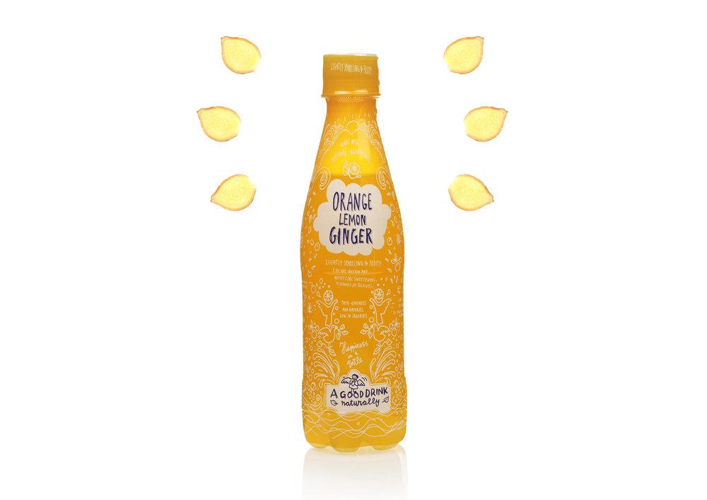Ginger Lemon Orange Soda Pop