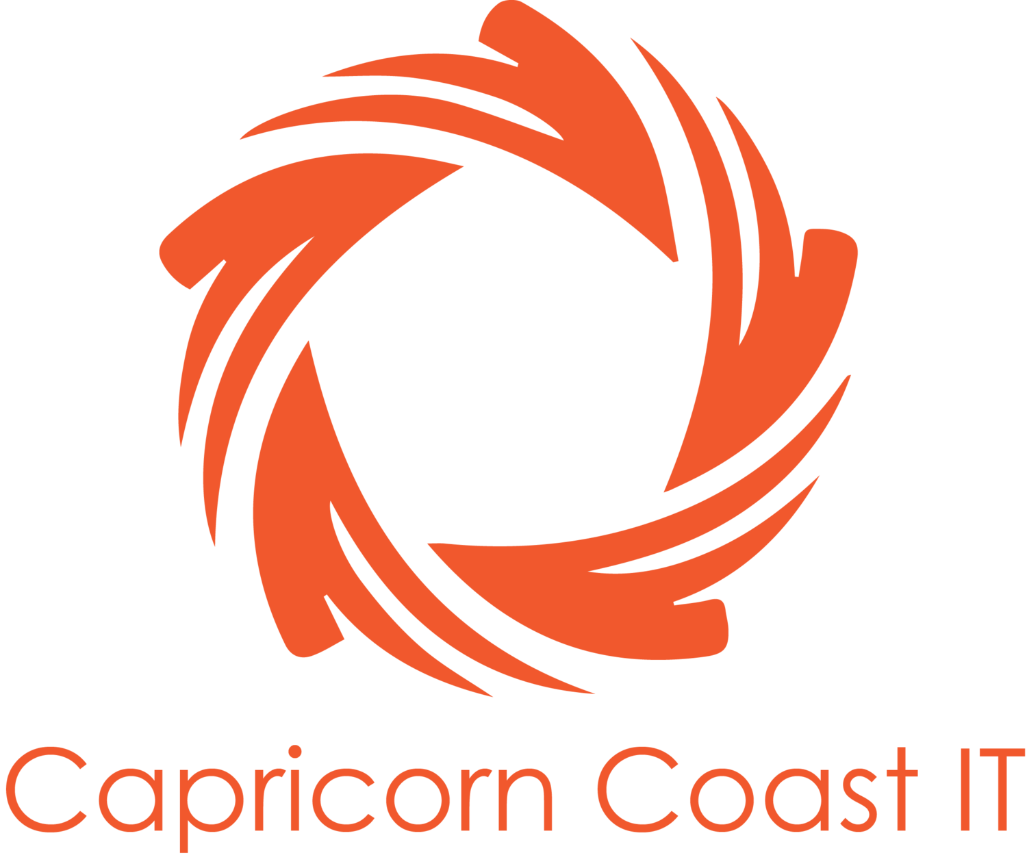 Capricorn Coast IT