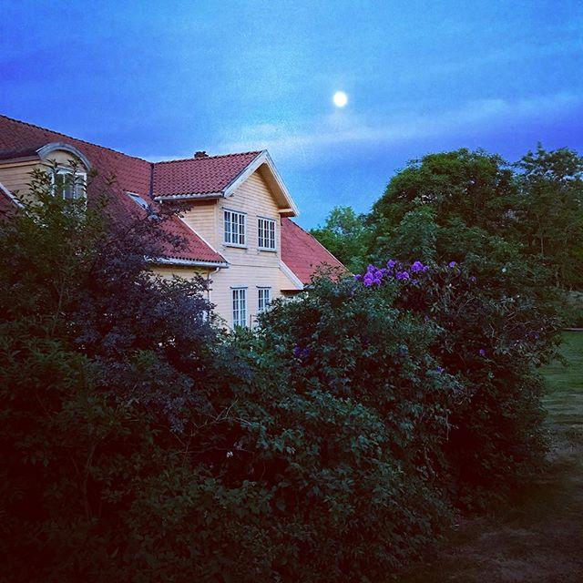 Årets «Aspargesfestival» er til ende. Vi ønsker alle en god uke med måneskinn!