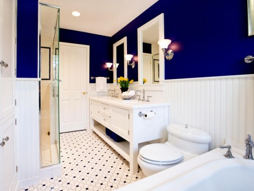navy blue & white bathroom