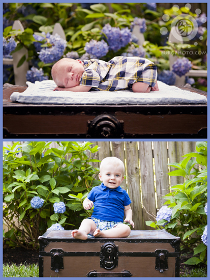 newborn to 1 year