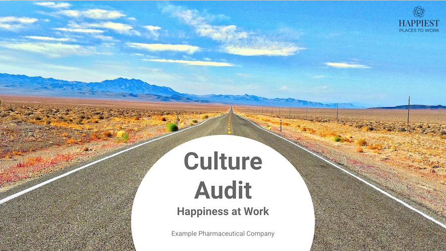 Click here to download our Culture Audit Example
