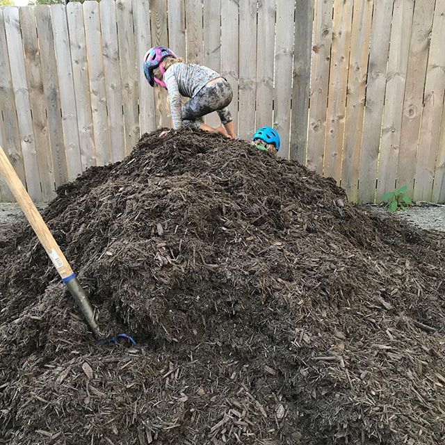 Much Mulch ———————————————————- A day some liken to Tax day, we think is a bit more like Christmas ———————————————————- #januaryfarms #backyardhomestead #mulching #homemademountains #gardening #permaculture
