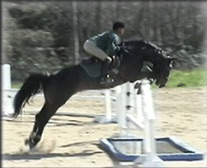 Karen_main_jumping.jpg
