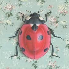 Emily_Uchytil_lady_bug.jpeg