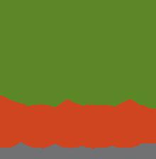 usf-login-logo.png