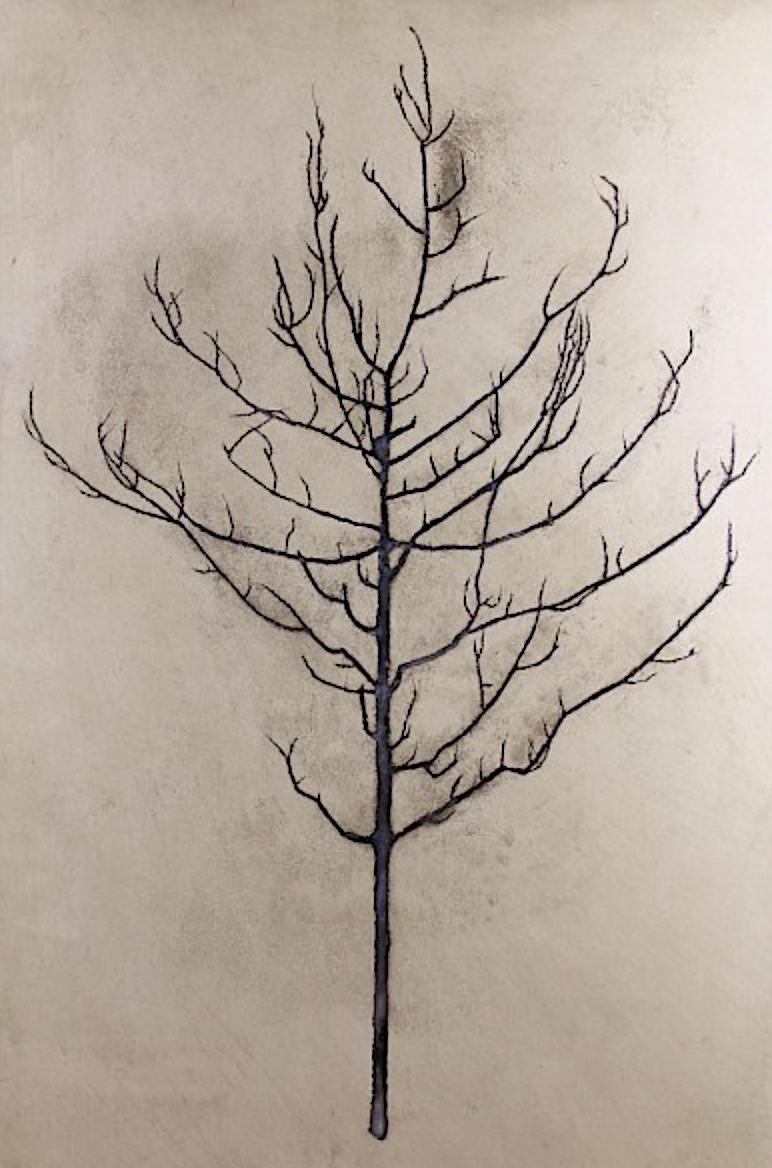 Camborne Tree