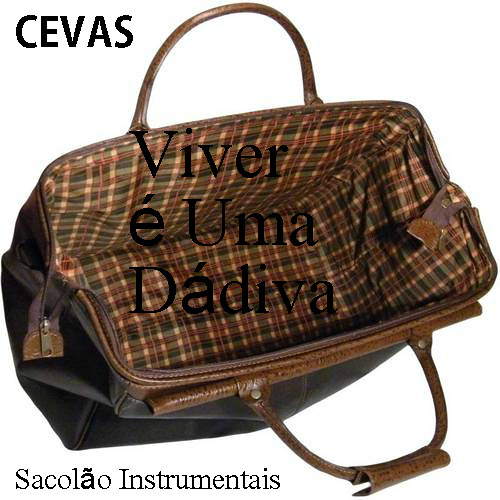 CEVAS - VIVER É UMA DÁDIVA EP