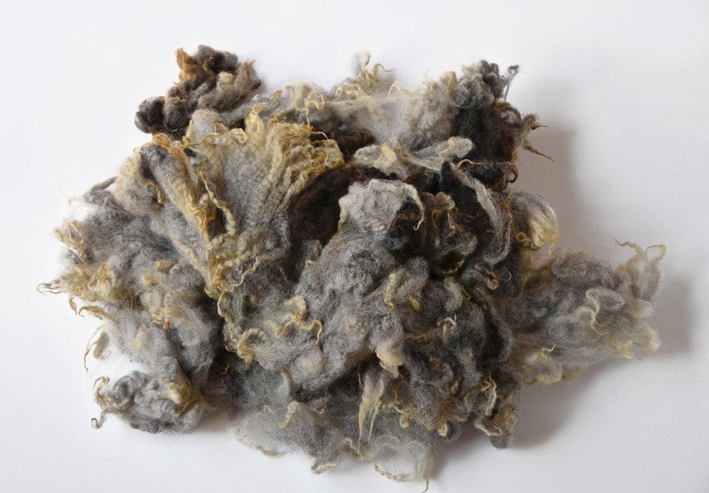 Gra Trondersau A Fleece © 222 Handspun