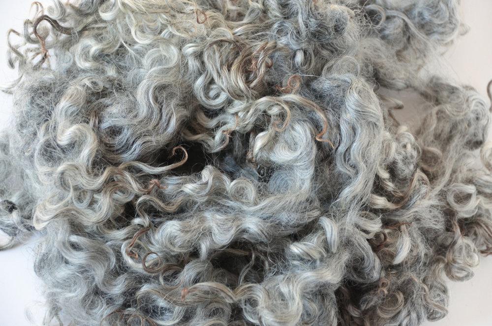 Norsk Pelssau Fleece © 222 Handspun