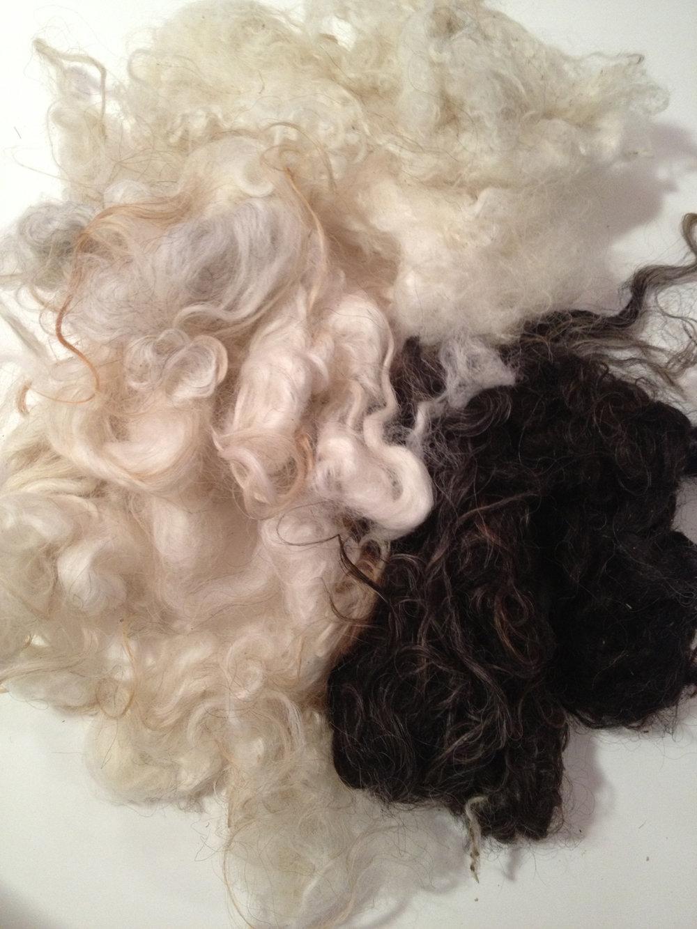 Washed Icelandic Fleece © 222 Handspun