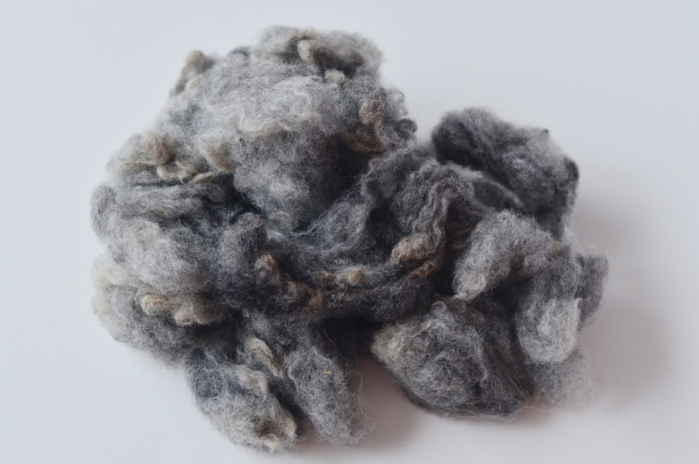 Namaste Farm August Breed Box // C - North Country Cheviot © 222 Handspun