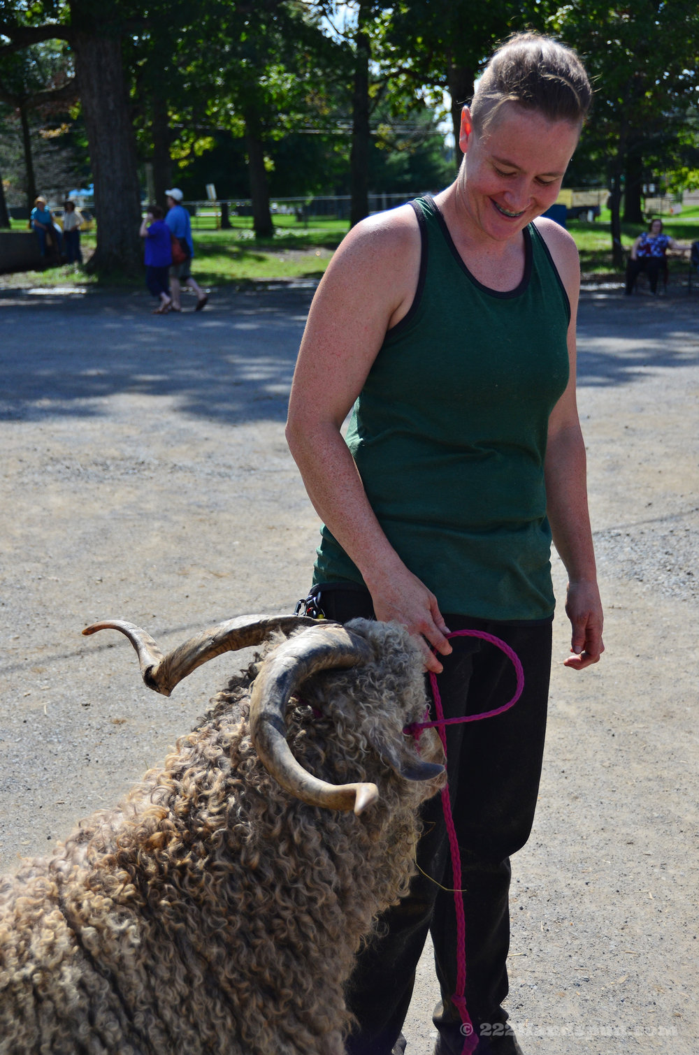 Emily Getting Ready to Shear an Angora Goat