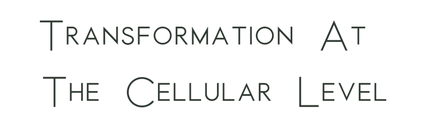 Transformation At The Cellular Level (2).png