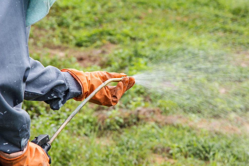Landscape Company Insurance policy | R&R Insurance Group